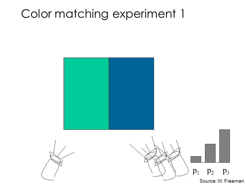 Color matching experiment 1 p 1 p 2 p 3 Source: W. Freeman