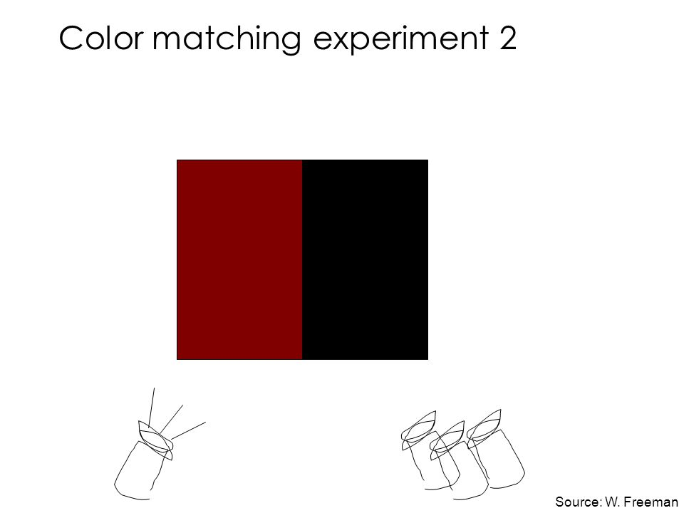 Color matching experiment 2 Source: W. Freeman