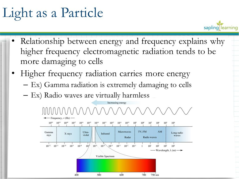 Relationship between energy and frequency explains why higher frequency electromagnetic radiation tends to be more damaging to cells Higher frequency radiation carries more energy – Ex) Gamma radiation is extremely damaging to cells – Ex) Radio waves are virtually harmless Light as a Particle