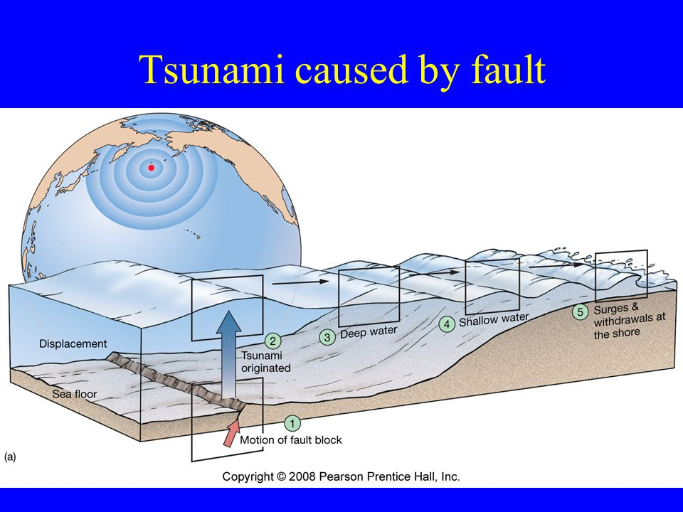 Tsunami caused by fault 65