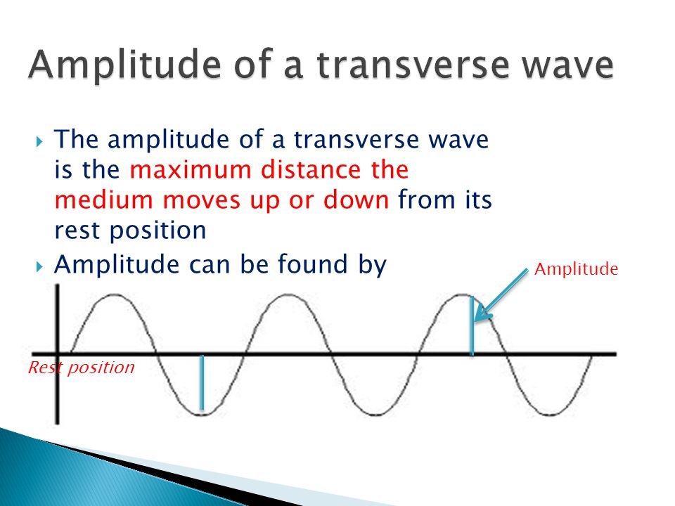  The amplitude of a transverse wave is the maximum distance the medium moves up or down from its rest position  Amplitude can be found by measuring