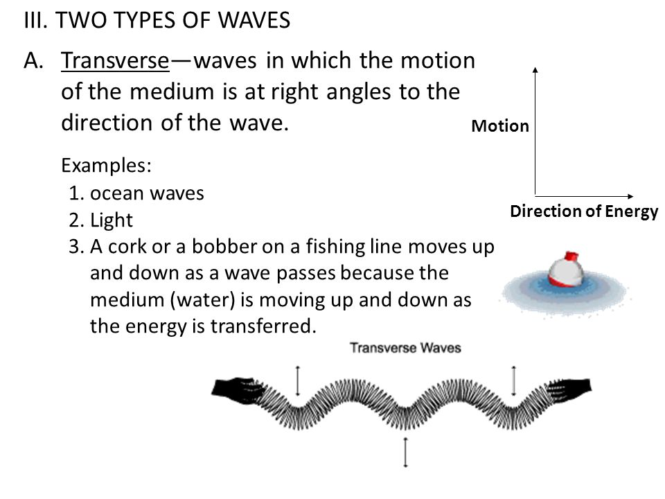 B.Longitudinal or Compression—waves consist of a series of compressions and rarefactions.