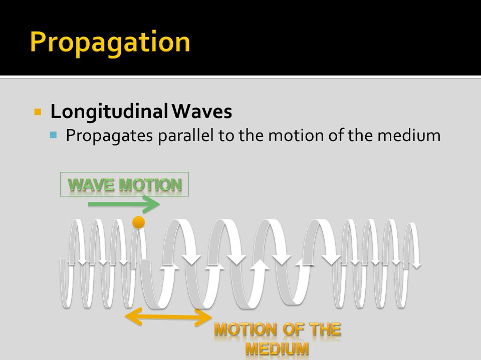  Longitudinal Waves  Propagates parallel to the motion of the medium