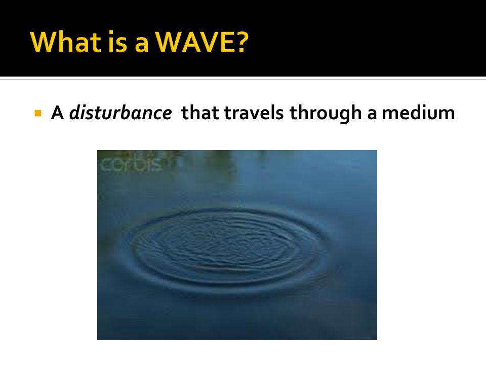  A disturbance that travels through a medium