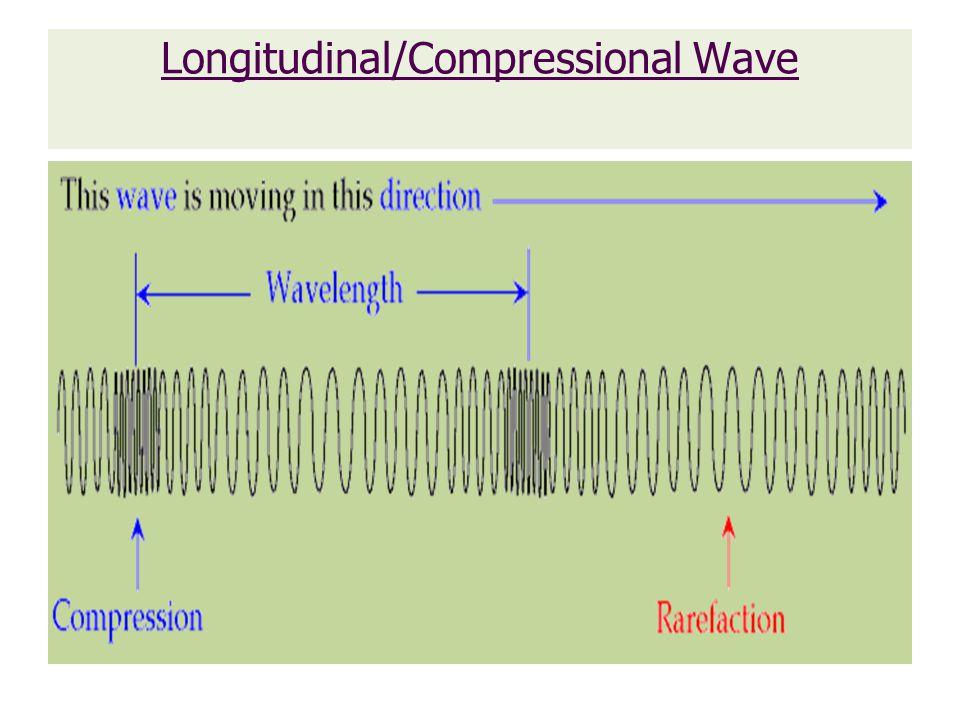 Longitudinal/Compressional Wave