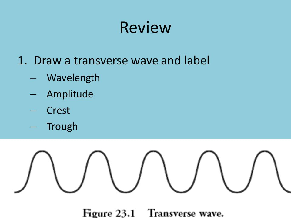 Review 1.Draw a transverse wave and label – Wavelength – Amplitude – Crest – Trough