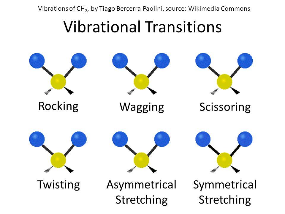 Vibrational Transitions Rocking WaggingScissoring Asymmetrical Stretching TwistingSymmetrical Stretching Vibrations of CH 2, by Tiago Bercerra Paolini, source: Wikimedia Commons