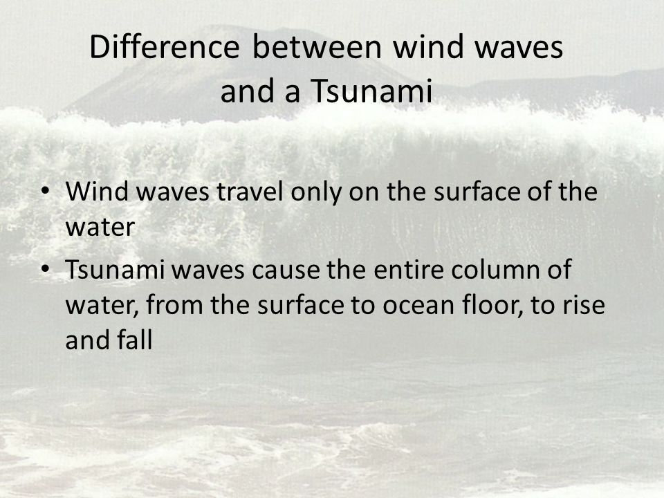 Difference between wind waves and a Tsunami Wind waves travel only on the surface of the water Tsunami waves cause the entire column of water, from th