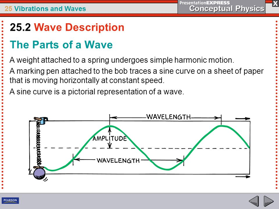 25 Vibrations and Waves The Parts of a Wave A weight attached to a spring undergoes simple harmonic motion. A marking pen attached to the bob traces a