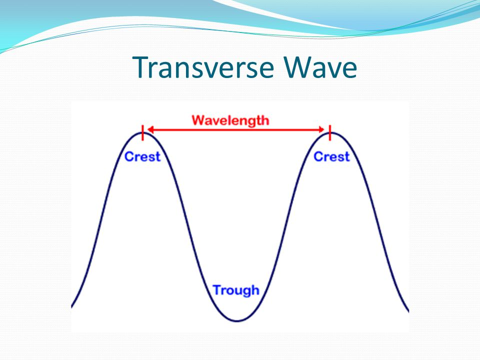 Parts of a Transverse Wave Crest- the highest part of the wave Trough- the lowest part of the wave