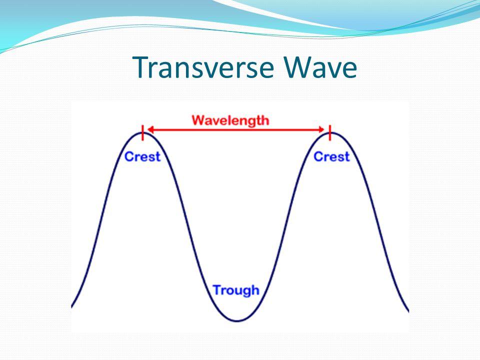 Transverse Wave
