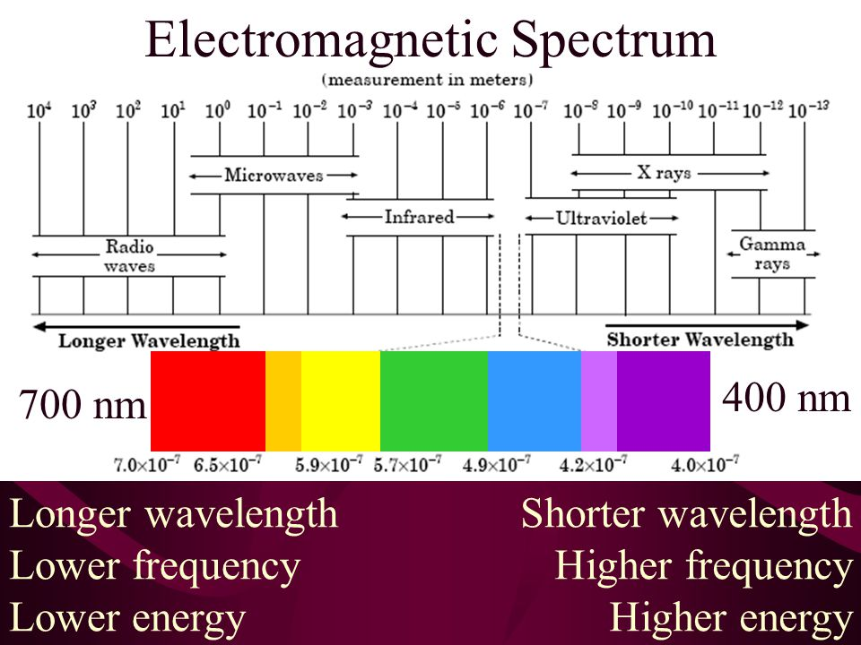 Electromagnetic Spectrum Longer wavelength Lower frequency Lower energy Shorter wavelength Higher frequency Higher energy