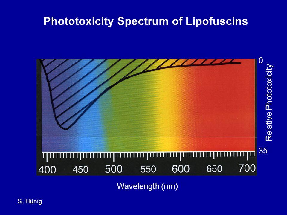 S. Hünig Phototoxicity Spectrum of Lipofuscins Wavelength (nm) Relative Phototoxicity 35 0