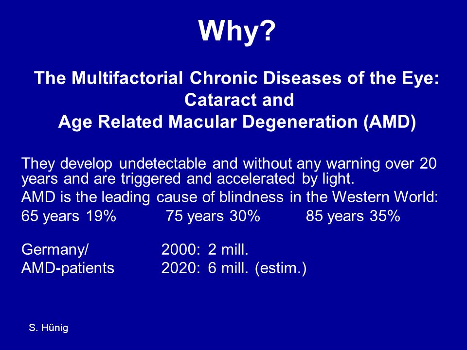 S. Hünig Normal vision Age related macular degeneration (AMD)