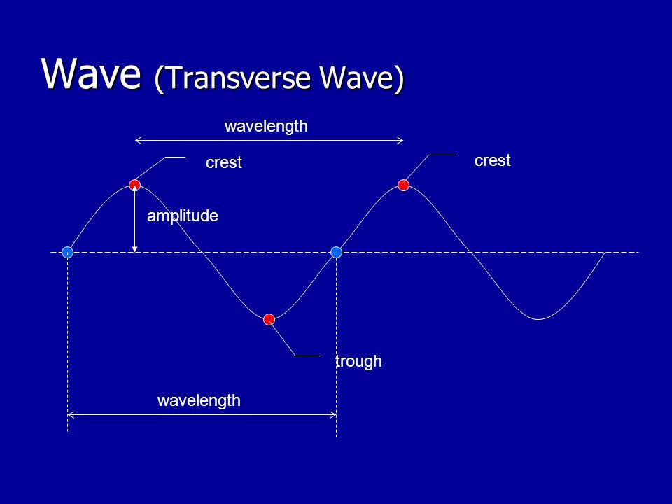 Wave (Transverse Wave) crest trough crest amplitude wavelength