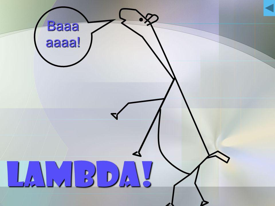 Baaa aaaa! Lambda!