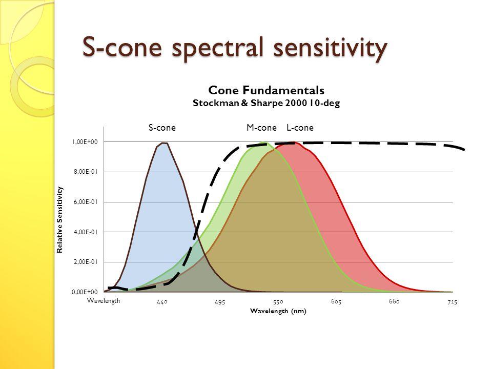 S-cone spectral sensitivity S-cone M-cone L-cone