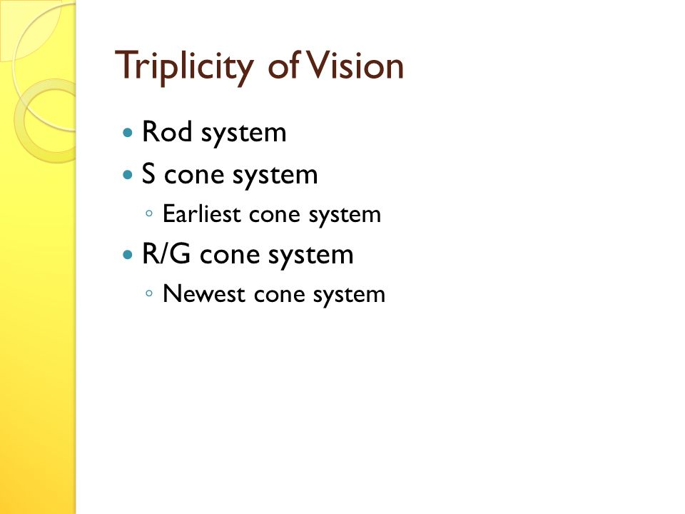 Triplicity of Vision Rod system S cone system ◦ Earliest cone system R/G cone system ◦ Newest cone system