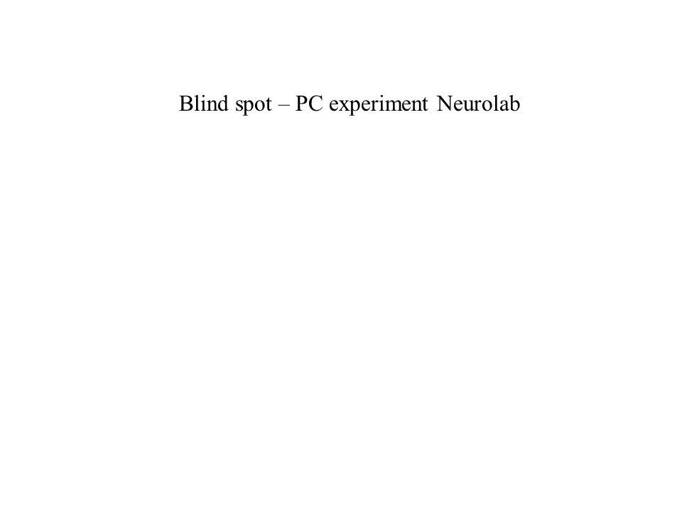 Blind spot – PC experiment Neurolab