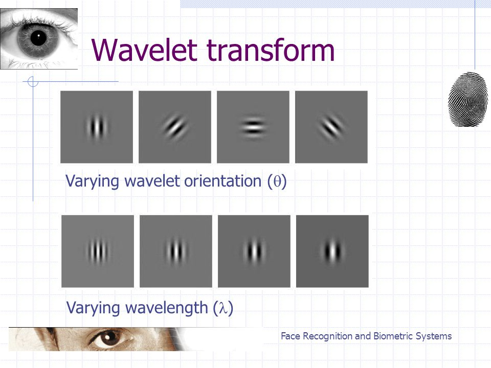 Face Recognition and Biometric Systems Wavelet transform Varying wavelet orientation (  ) Varying wavelength ( )
