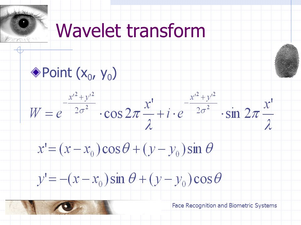 Face Recognition and Biometric Systems Wavelet transform Point (x 0, y 0 )