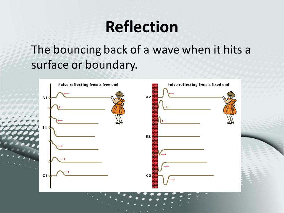 Reflection The bouncing back of a wave when it hits a surface or boundary.