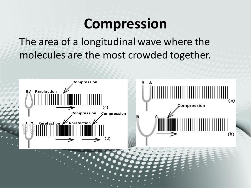 Compression The area of a longitudinal wave where the molecules are the most crowded together.