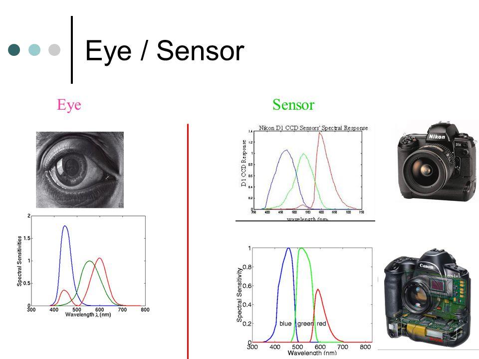 Eye / Sensor SensorEye