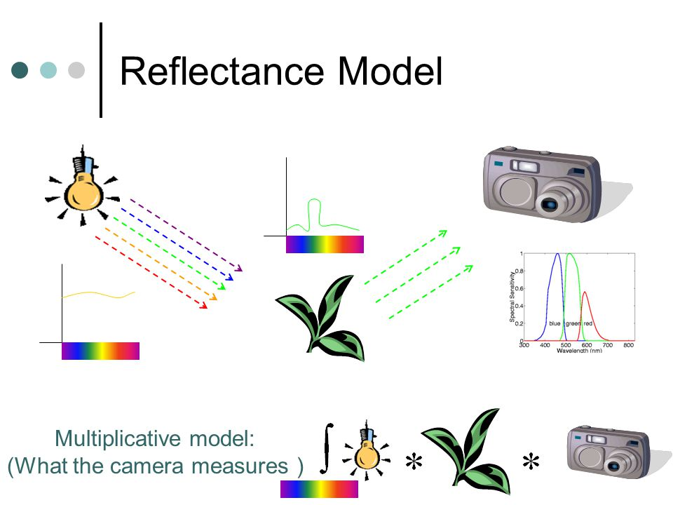 Reflectance Model Multiplicative model: (What the camera measures )
