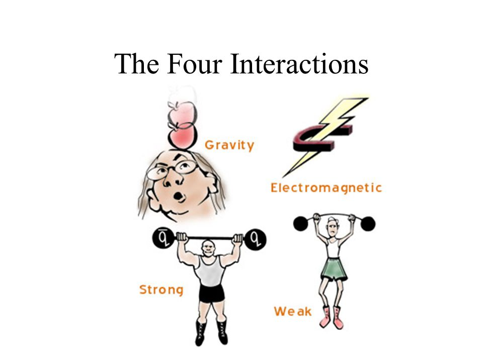 The Four Interactions