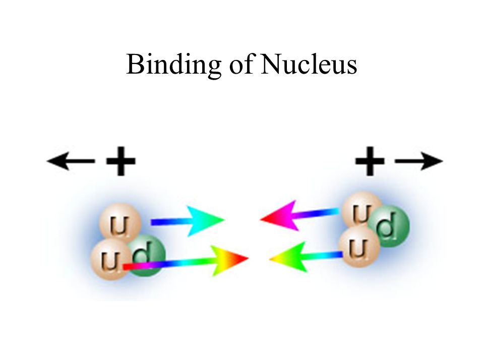 Binding of Nucleus
