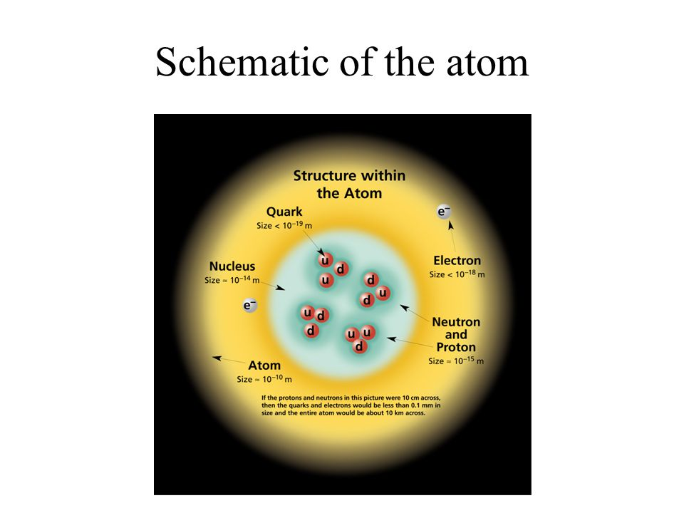 Schematic of the atom
