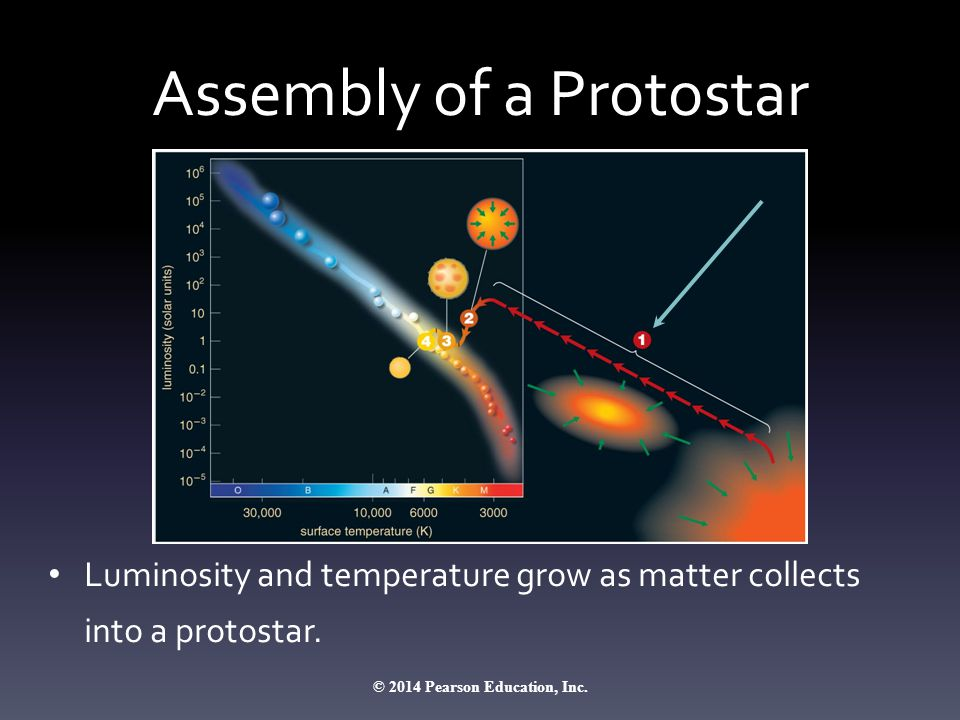 Assembly of a Protostar Luminosity and temperature grow as matter collects into a protostar. © 2014 Pearson Education, Inc.