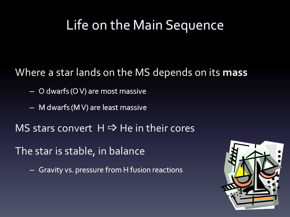 Life on the Main Sequence Where a star lands on the MS depends on its mass – O dwarfs (O V) are most massive – M dwarfs (M V) are least massive MS stars convert H  He in their cores The star is stable, in balance – Gravity vs.
