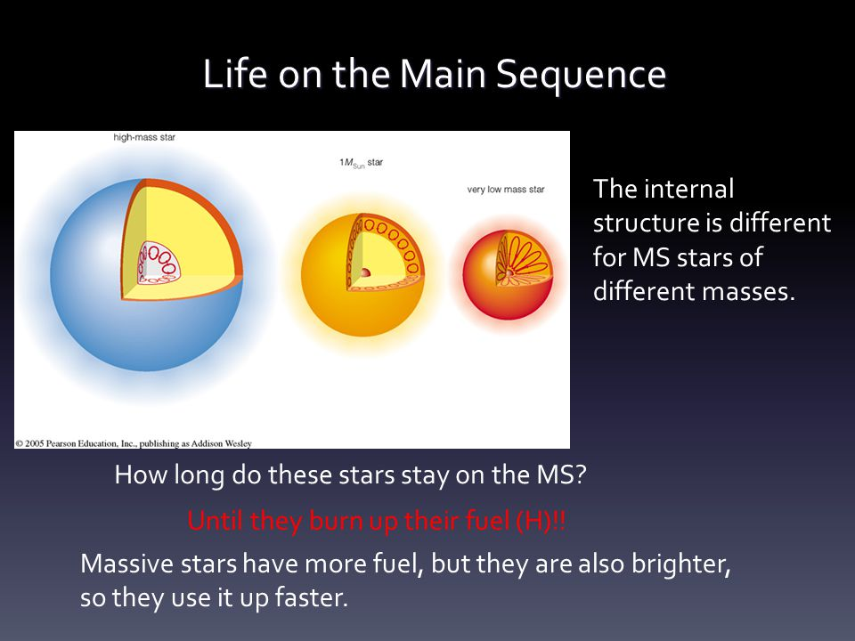 Life on the Main Sequence The internal structure is different for MS stars of different masses. How long do these stars stay on the MS? Until they bur