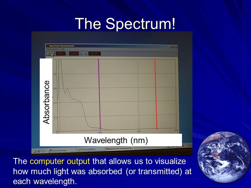 The Spectrum.