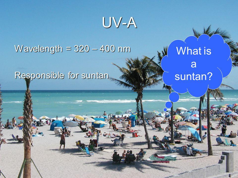 UV-A Wavelength = 320 – 400 nm Responsible for suntan What is a suntan?