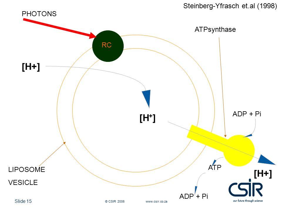 Slide 15 © CSIR 2006 www.csir.co.za RC ATPsynthase ADP + Pi ATP ADP + Pi [H + ] PHOTONS LIPOSOME VESICLE Steinberg-Yfrasch et.al (1998)