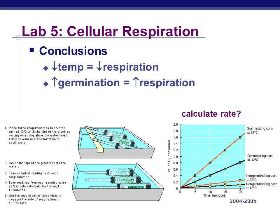 AP Biology 2004-2005 Lab 5: Cellular Respiration  Conclusions   temp =  respiration   germination =  respiration calculate rate?