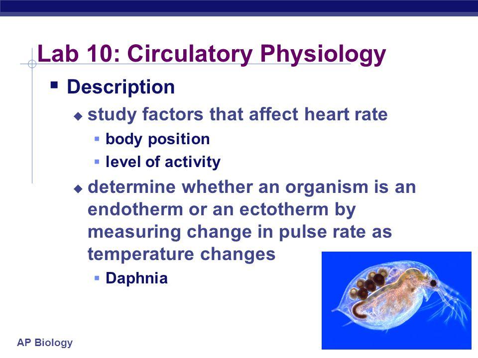 AP Biology 2004-2005 Lab 10: Circulatory Physiology  Description  study factors that affect heart rate  body position  level of activity  determi