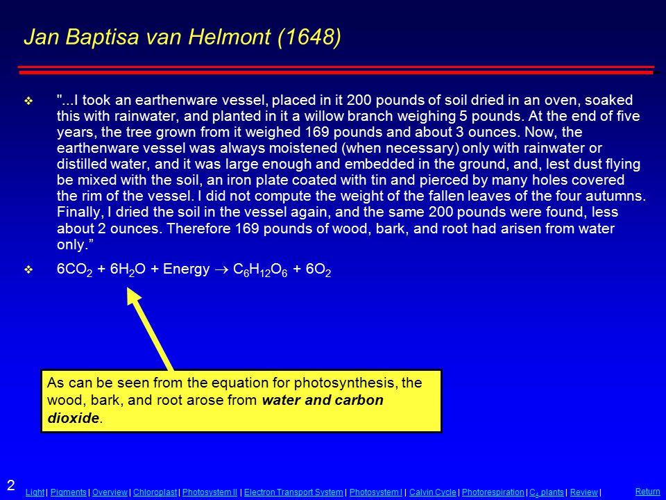 2 LightLight | Pigments | Overview | Chloroplast | Photosystem II | Electron Transport System | Photosystem I | Calvin Cycle | Photorespiration | C 4