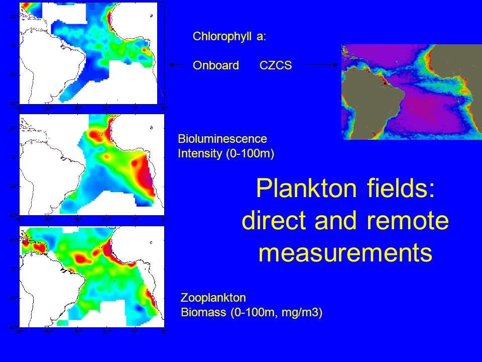 Plankton fields: direct and remote measurements Chlorophyll a: Onboard CZCS Bioluminescence Intensity (0-100m) Zooplankton Biomass (0-100m, mg/m3)