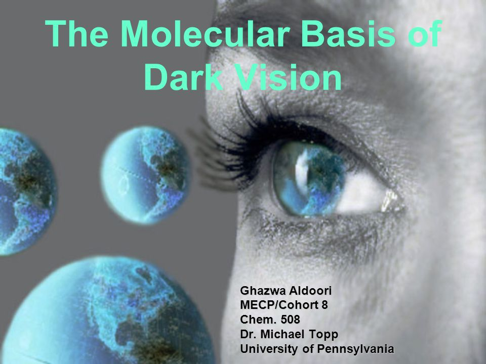 The Molecular Basis of Dark Vision Ghazwa Aldoori MECP/Cohort 8 Chem.