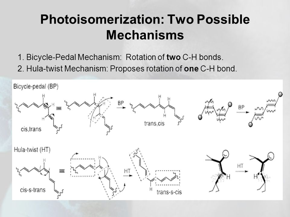 Photoisomerization: Two Possible Mechanisms 1. Bicycle-Pedal Mechanism: Rotation of two C-H bonds.