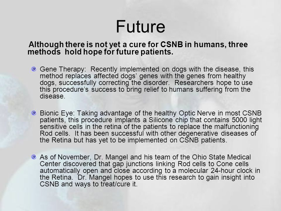 Future Although there is not yet a cure for CSNB in humans, three methods hold hope for future patients.