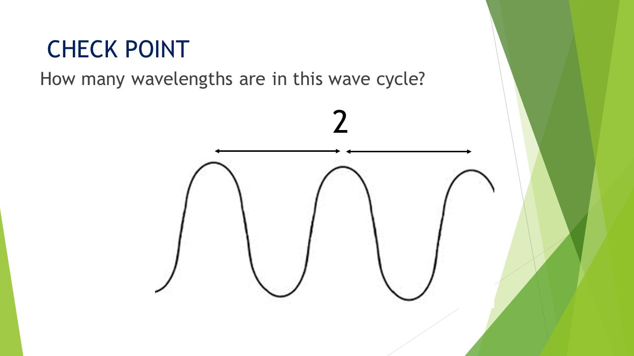 CHECK POINT How many wavelengths are in this wave cycle 2