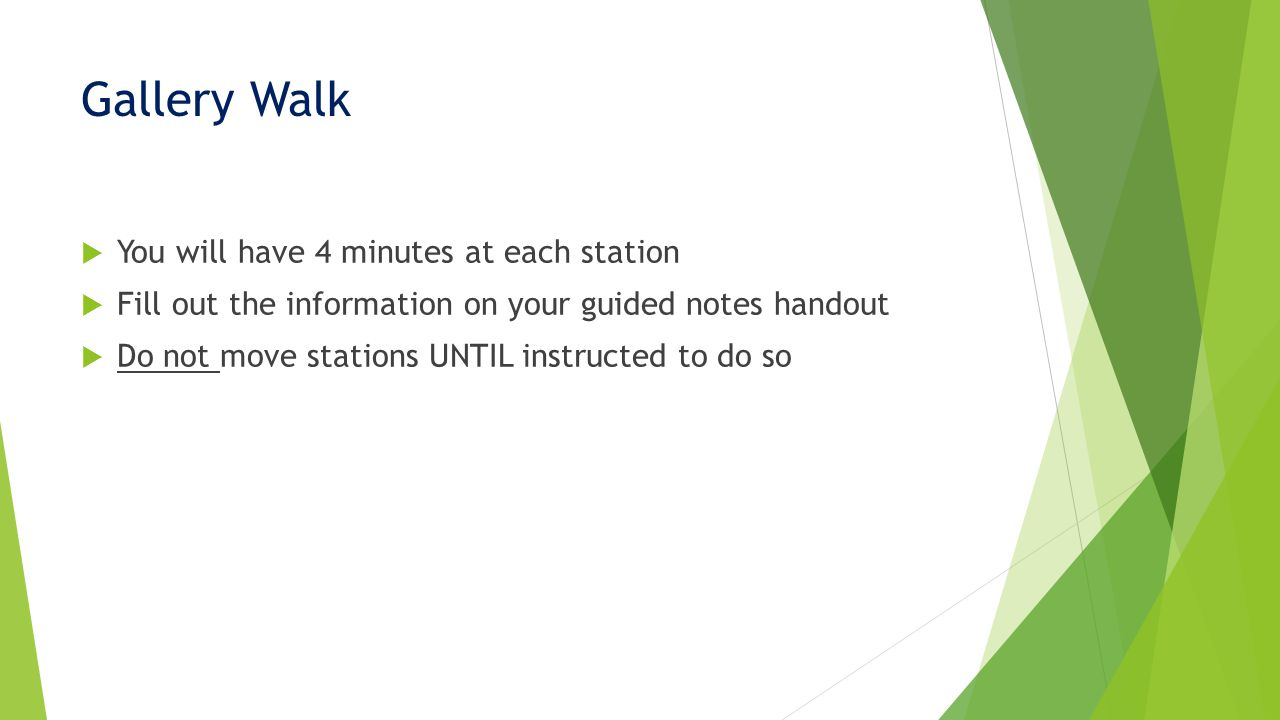 Gallery Walk  You will have 4 minutes at each station  Fill out the information on your guided notes handout  Do not move stations UNTIL instructed to do so