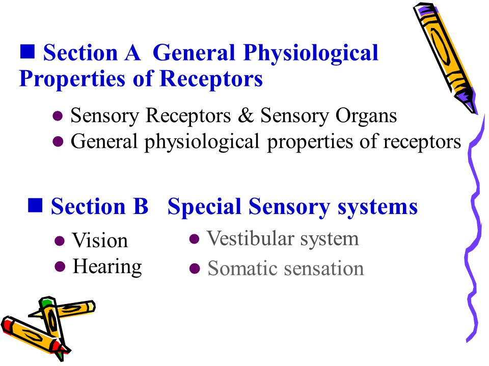 Section A General Physiological Properties of Receptors Section B Special Sensory systems Sensory Receptors & Sensory Organs General physiological pro