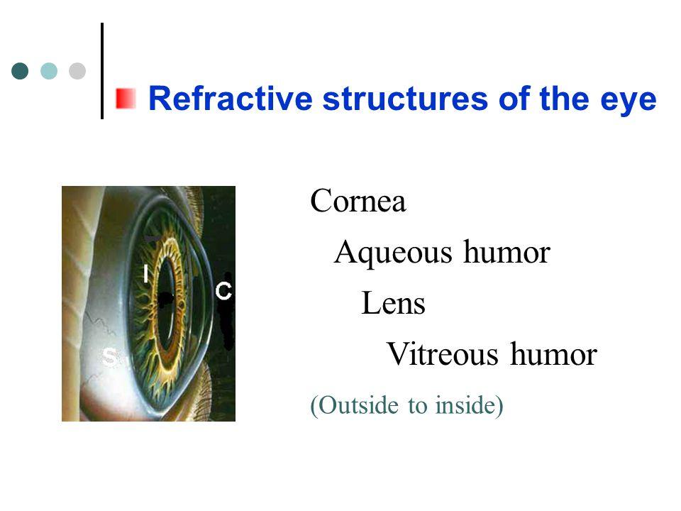 Refractive structures of the eye Cornea Aqueous humor Lens Vitreous humor (Outside to inside)