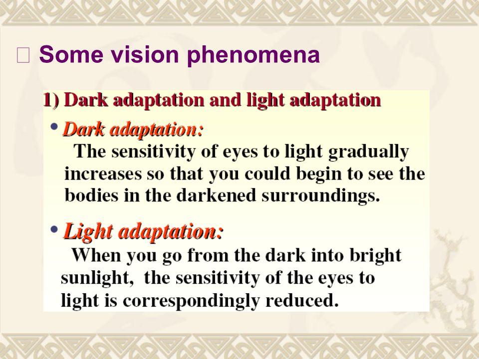 Ⅲ Some vision phenomena